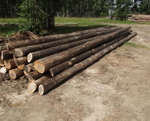 postes impregnados eucalipto
